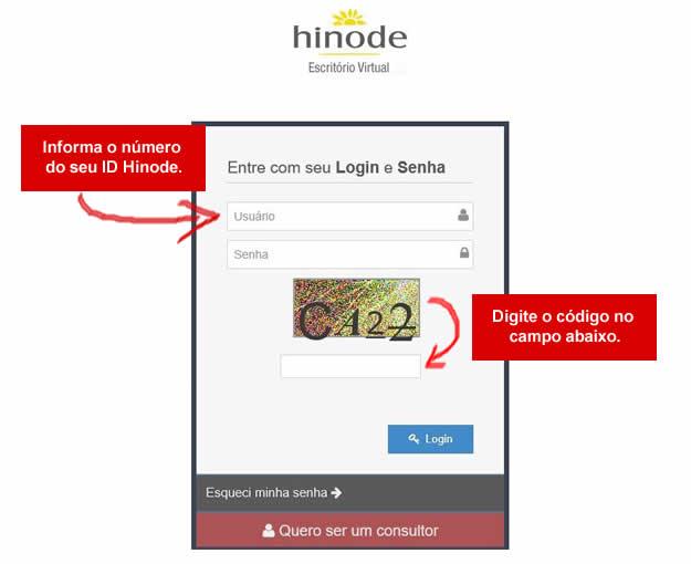 Escritório Virtual Hinode - Página de Entrada