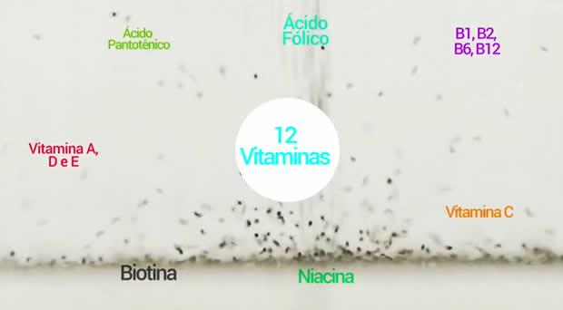 shake-hinode-vitaminas